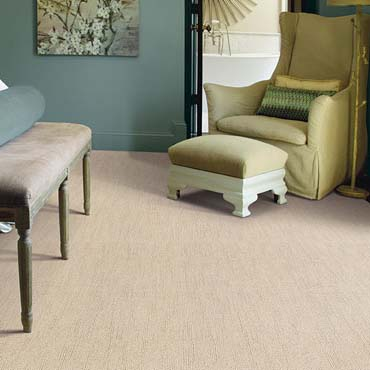 Caress Carpet by Shaw | Pasadena, MD