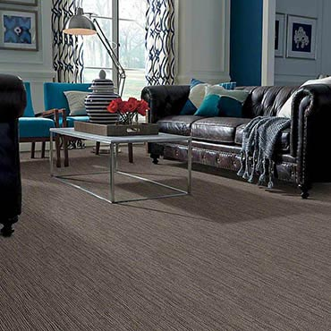 Anso® Nylon Carpet | Pasadena, MD